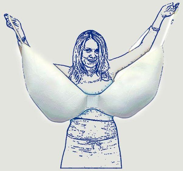 large-size-l-bra
